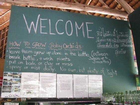 Информационный стенд на ферме орхидей, Пхукет