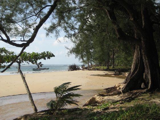 ''Nai Yang Beach'', окружённый буйной тропической растительностью, всегда немноголюден, несмотря на то, что расположен всего в 5 минутах езды от аэропорта