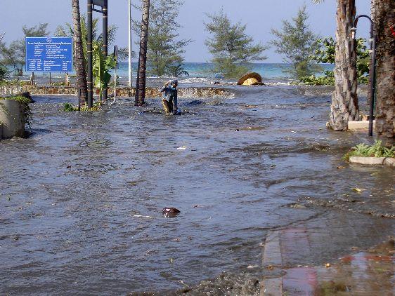 Одно из самых крупных цунами произошло в 2004 году, когда погибло более 8000 человек